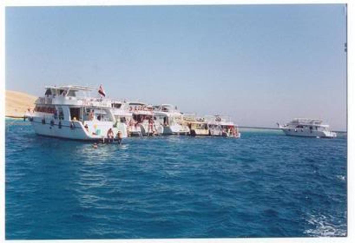 some of the better equipped shark diving boats in the Red Sea