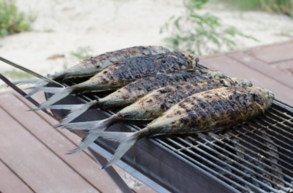 grilling fish on outdoor grill