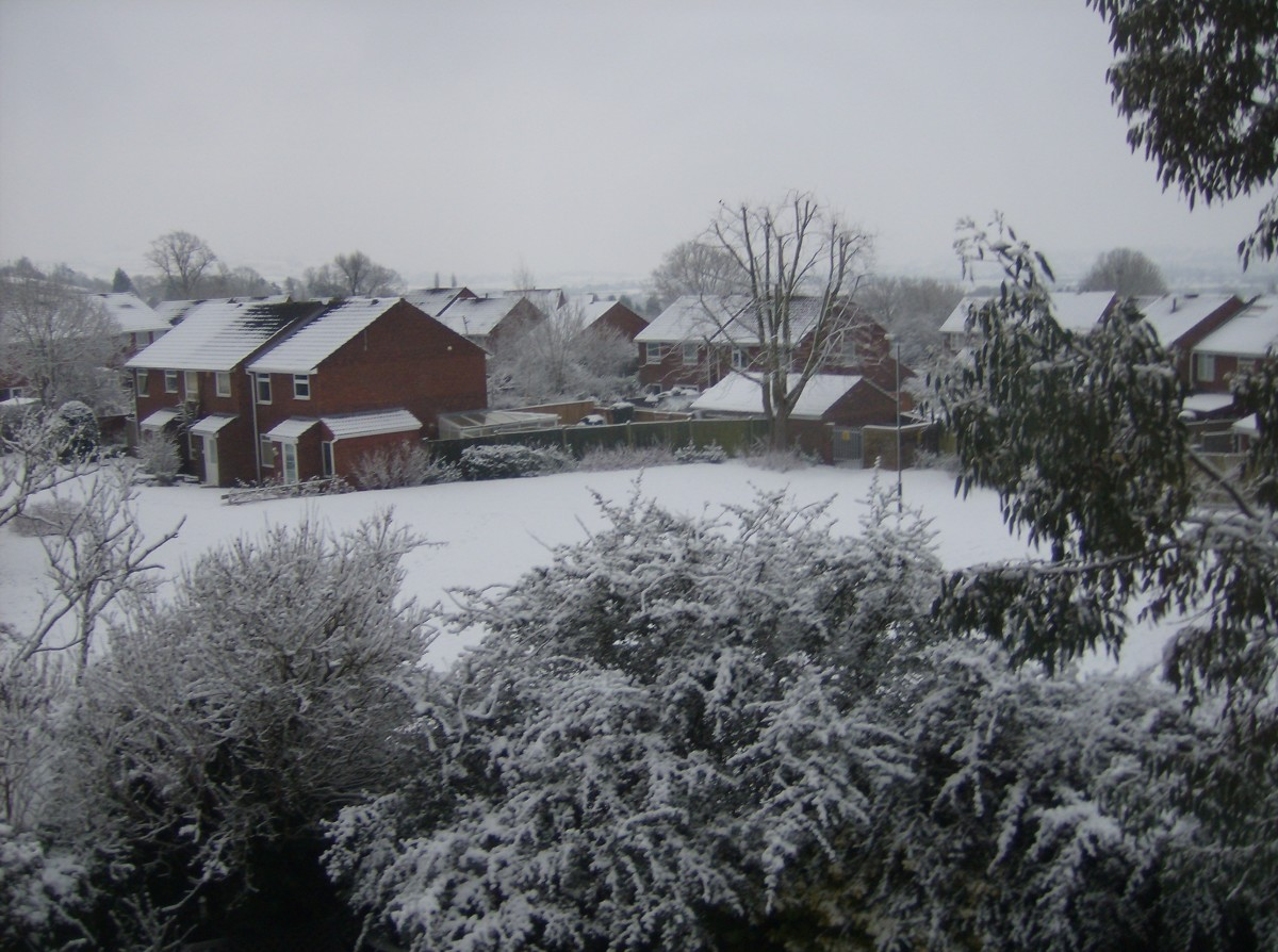 The view from my window. Pass the hot toddy ... now!