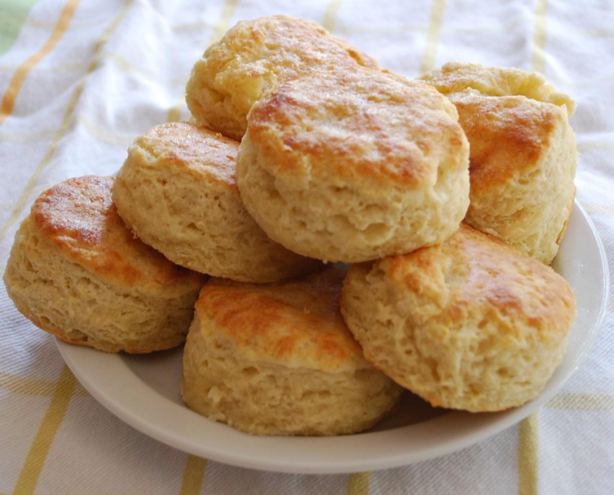 Biscuit?