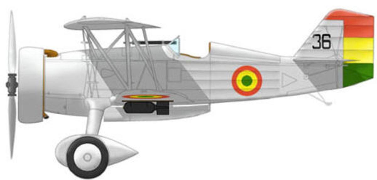 Bolivian fighter