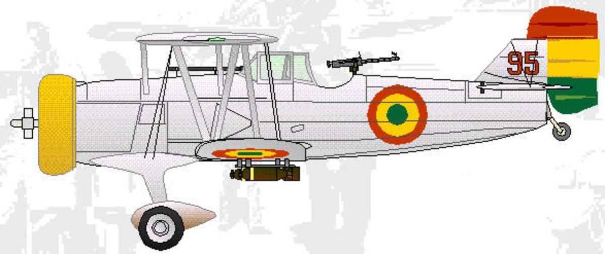 Paraguayan fighter