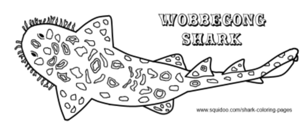 Wobbegong Coloring Page