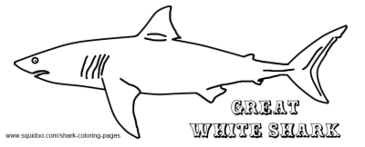 great white shark coloring pages online | Shark Coloring Pages