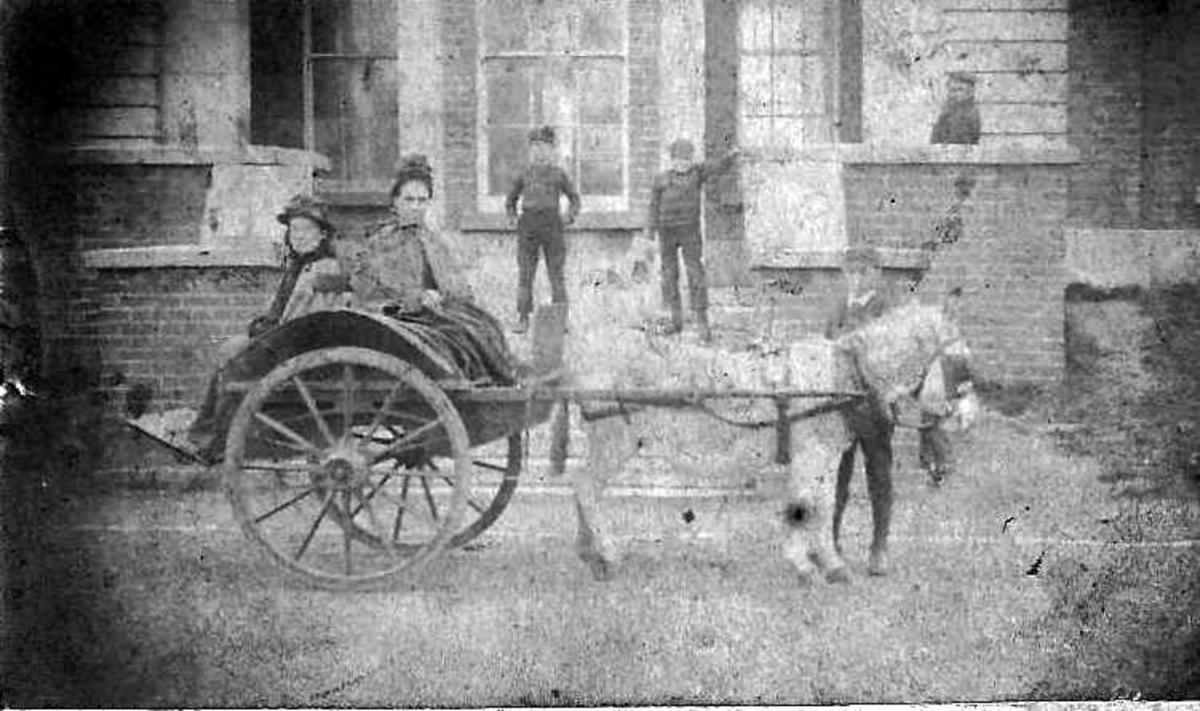 Family and servants at the big house in 1890's Ireland