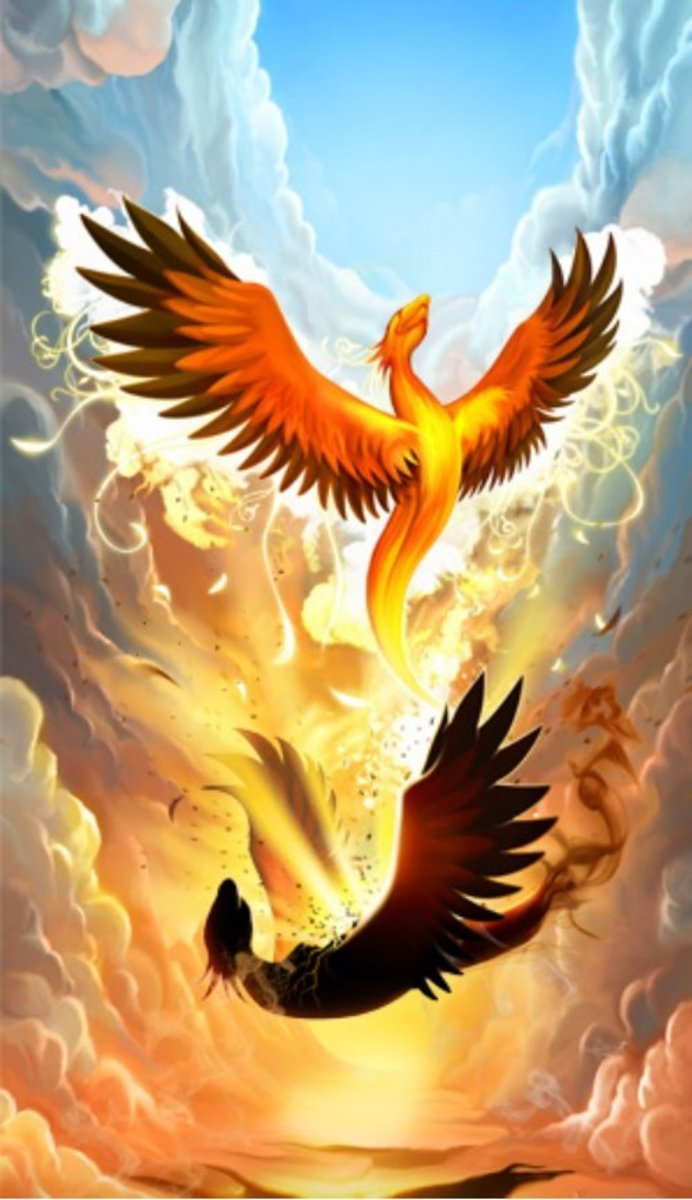 FROM THE ASHES RISES THE PHOENIX
