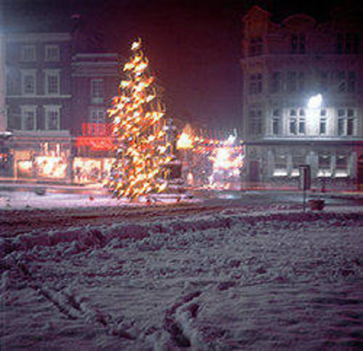 """The Christmas tree near Windsor Castle during """"The Great Freeze.""""  Image courtesy Royal Windsor Website.com."""