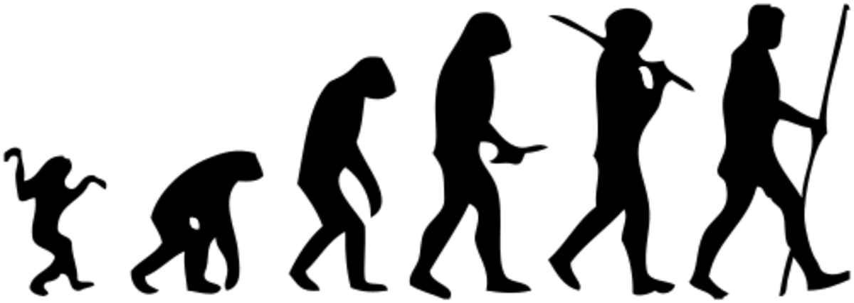 Do we still need the death penalty after 2.2 million years of evolution?