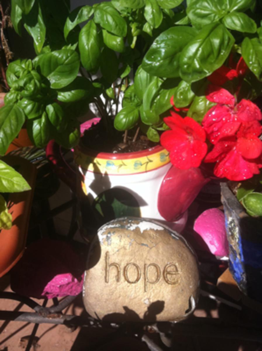 Hope Grows In My Garden