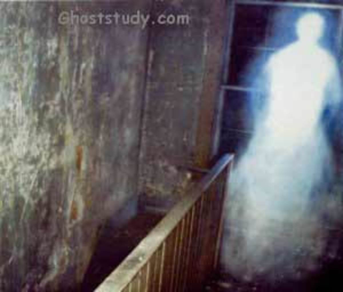 how-to-create-paranormal-website