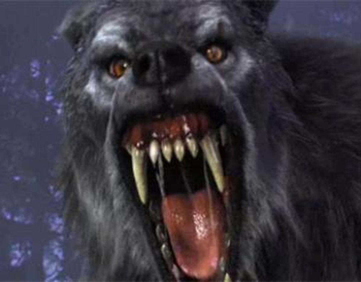Great Lakes Dogman - Demi-god, werewolf or a figmant of the imagination