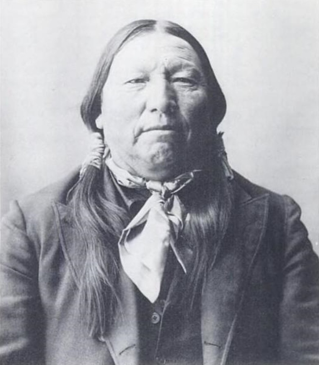 Bull Bear -  dog soldier chief in 1863