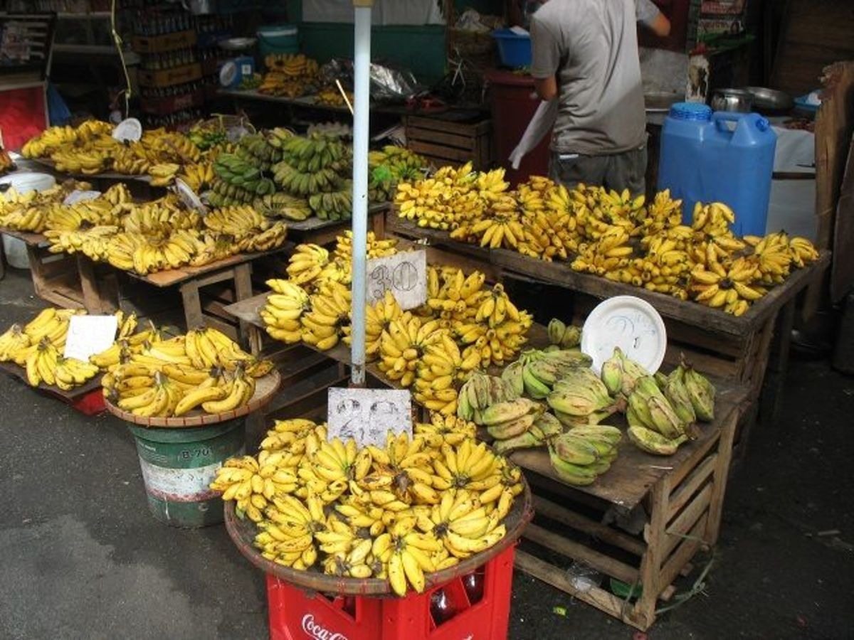 Seasonal fruits are sold in most areas, notably Plaza Miranda plus Hidalgo and Villalobos streets.  Bananas are available all year round