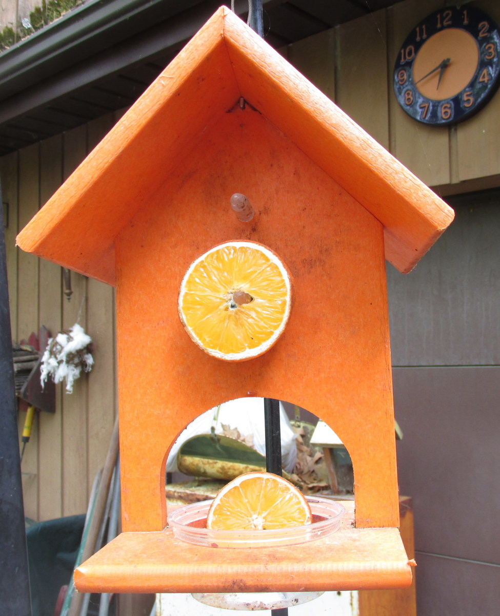 My oriole fruit and jelly feeder has pegs to spear the fruit, and a cup to add jelly or more fruit, and it is 2-sided.