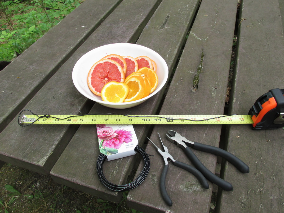 Supplies needed to make a fruit feeder for the birds.