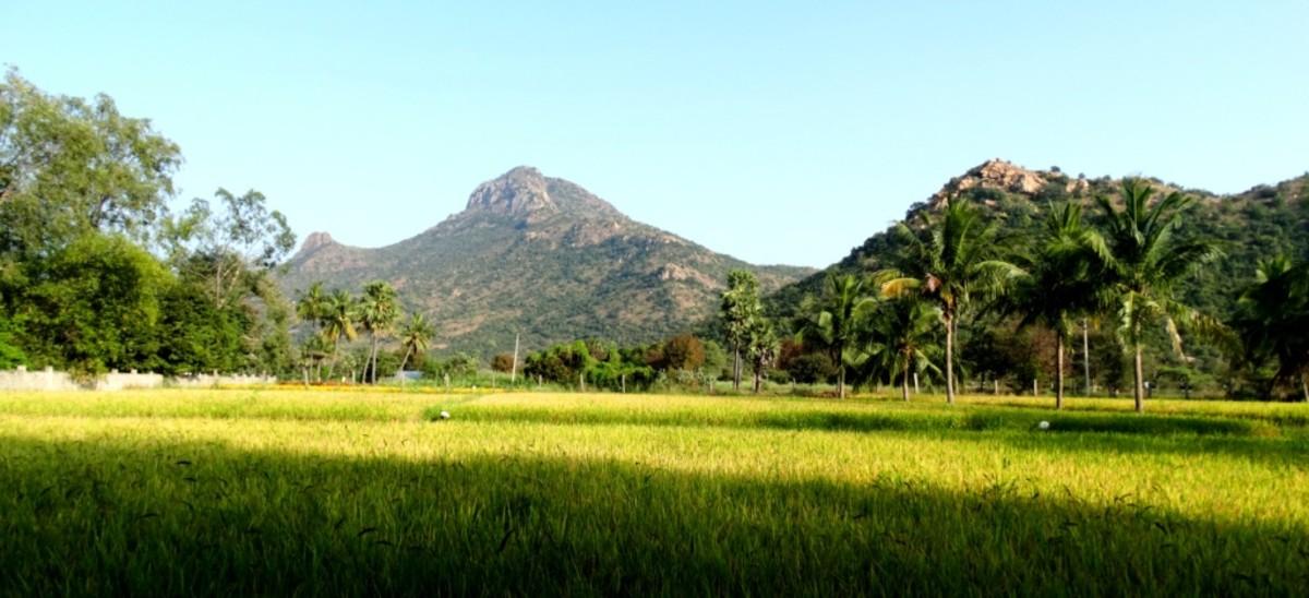 Arunachal hill as seen from the Giri Valam path