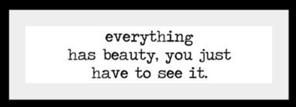 everything has beauty, you just have to see it.
