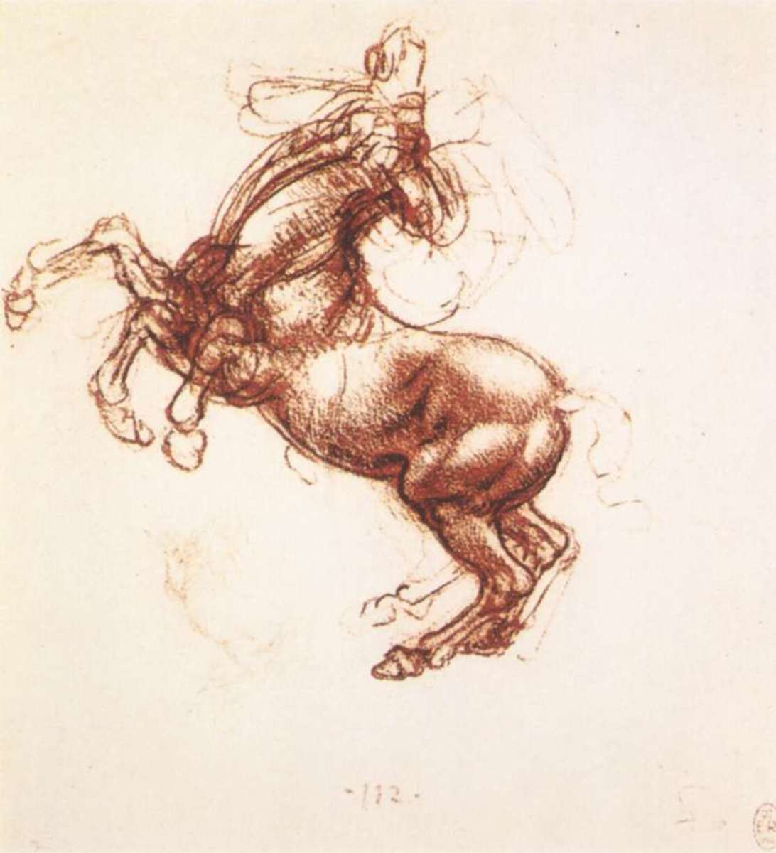 Da Vinci made many drawings during his study to create a beautiful horse.