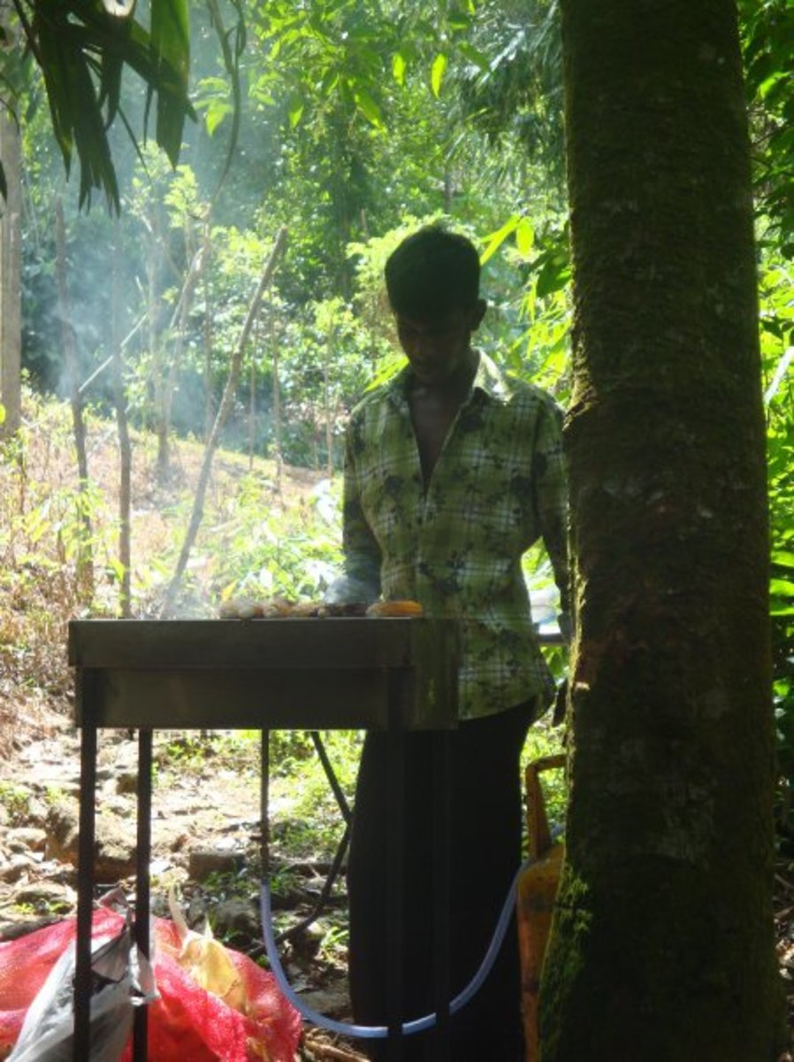 Barbecue time , hotel staff will prepare the barbecue for you