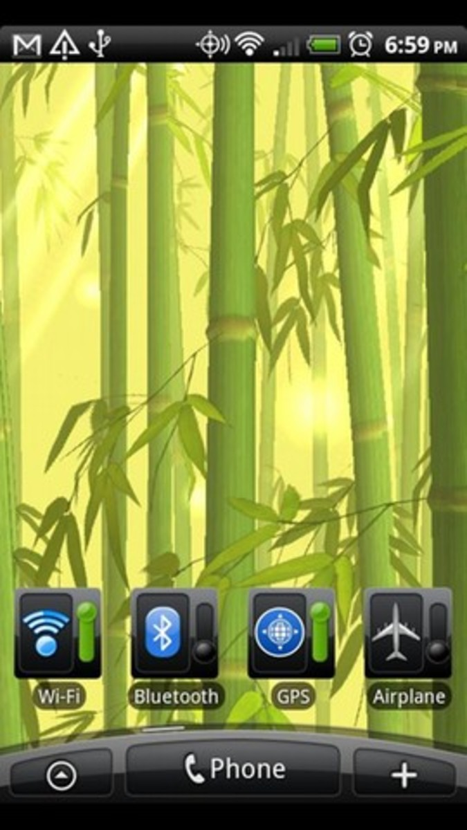 Enchanted Bamboo Forest
