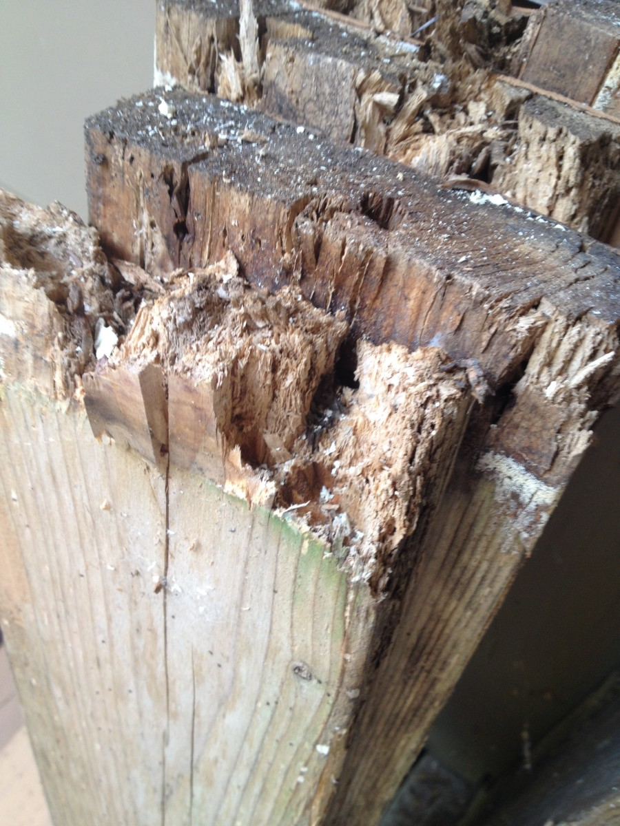 How to Repair Wood Rot on Your Outdoor Deck: A General Overview
