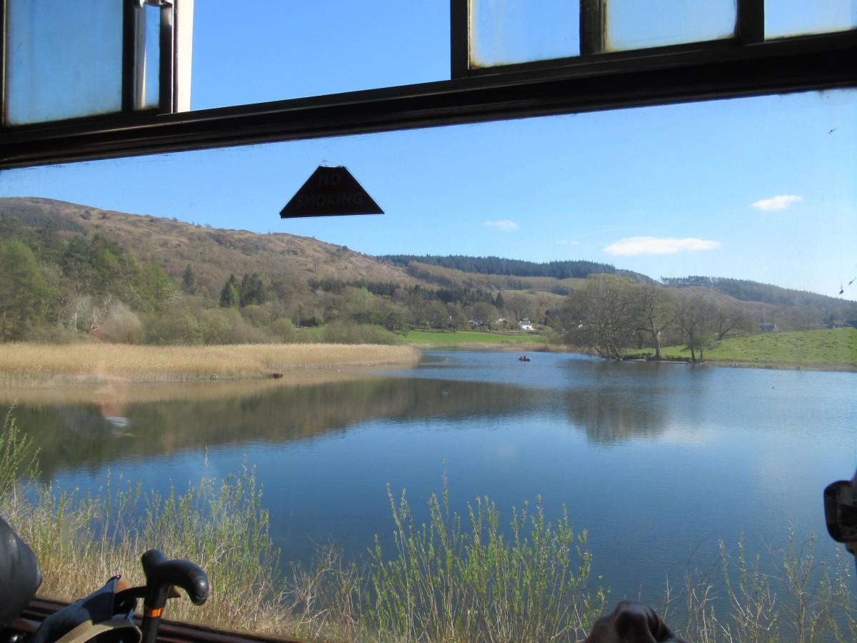Reflective Scenery