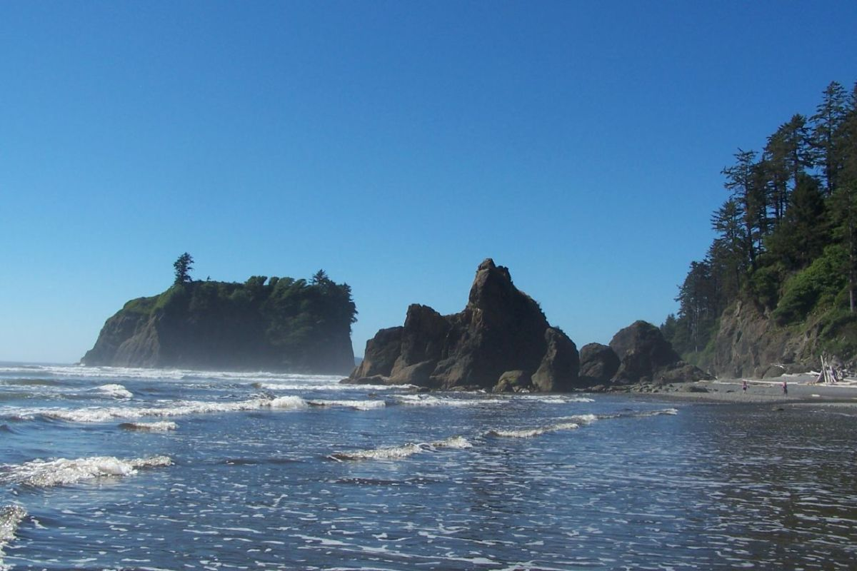 Olympic National Park coastline