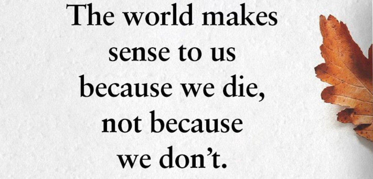 i-wishthe-world-makes-sense-to-us-because-we-die-not-because-we-dont