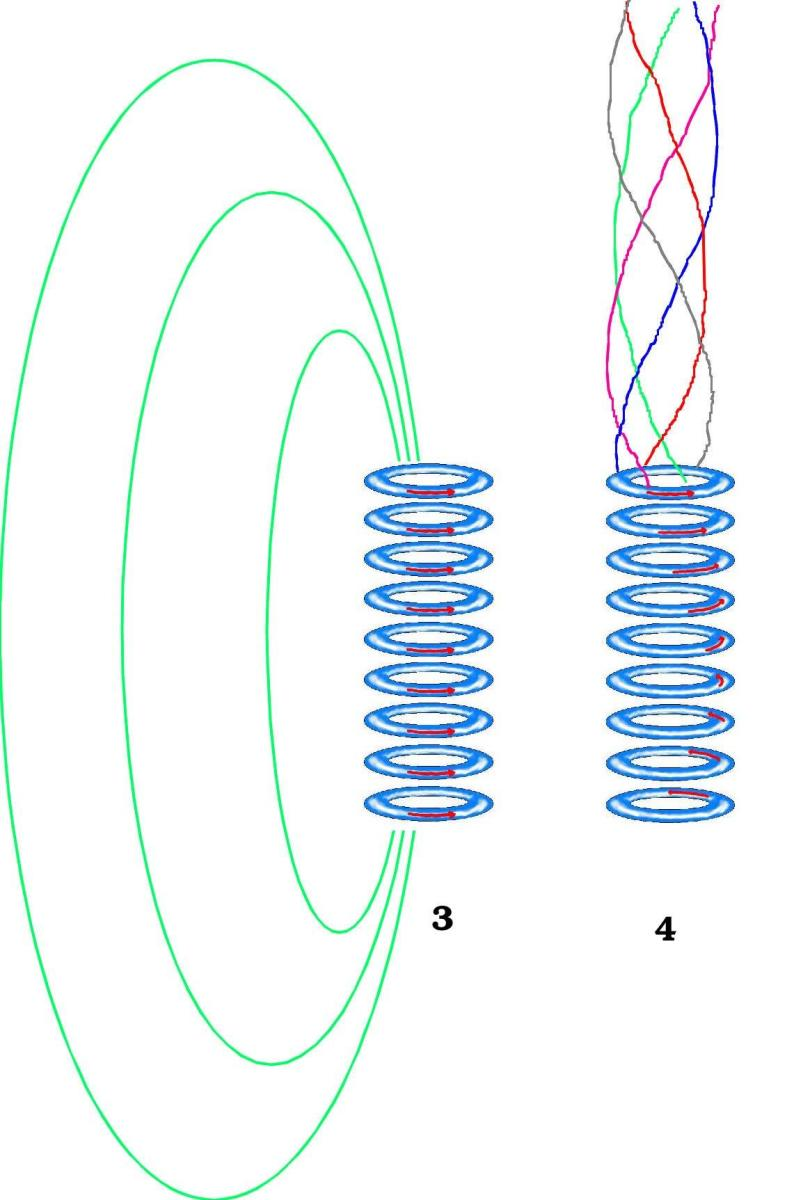 The standard magnetic field (L) and the magnetic barrel effect (R) due to collimation is depicted.