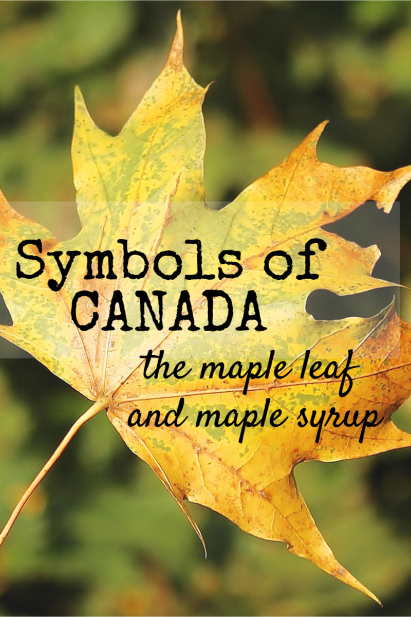 Symbols of Canada - The Maple Leaf and Maple Syrup