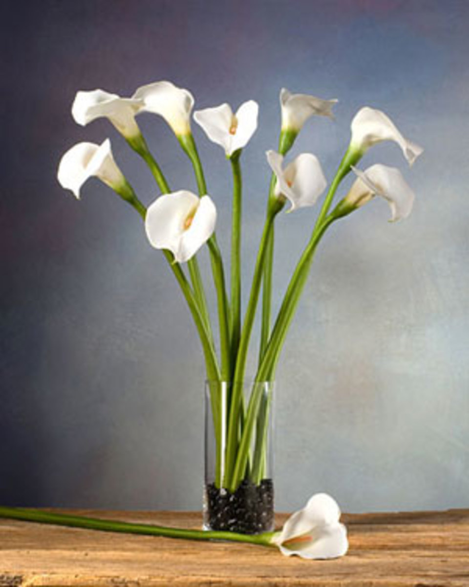 From lilies to trees, artificial silk plants are available in a range of shapes and sizes