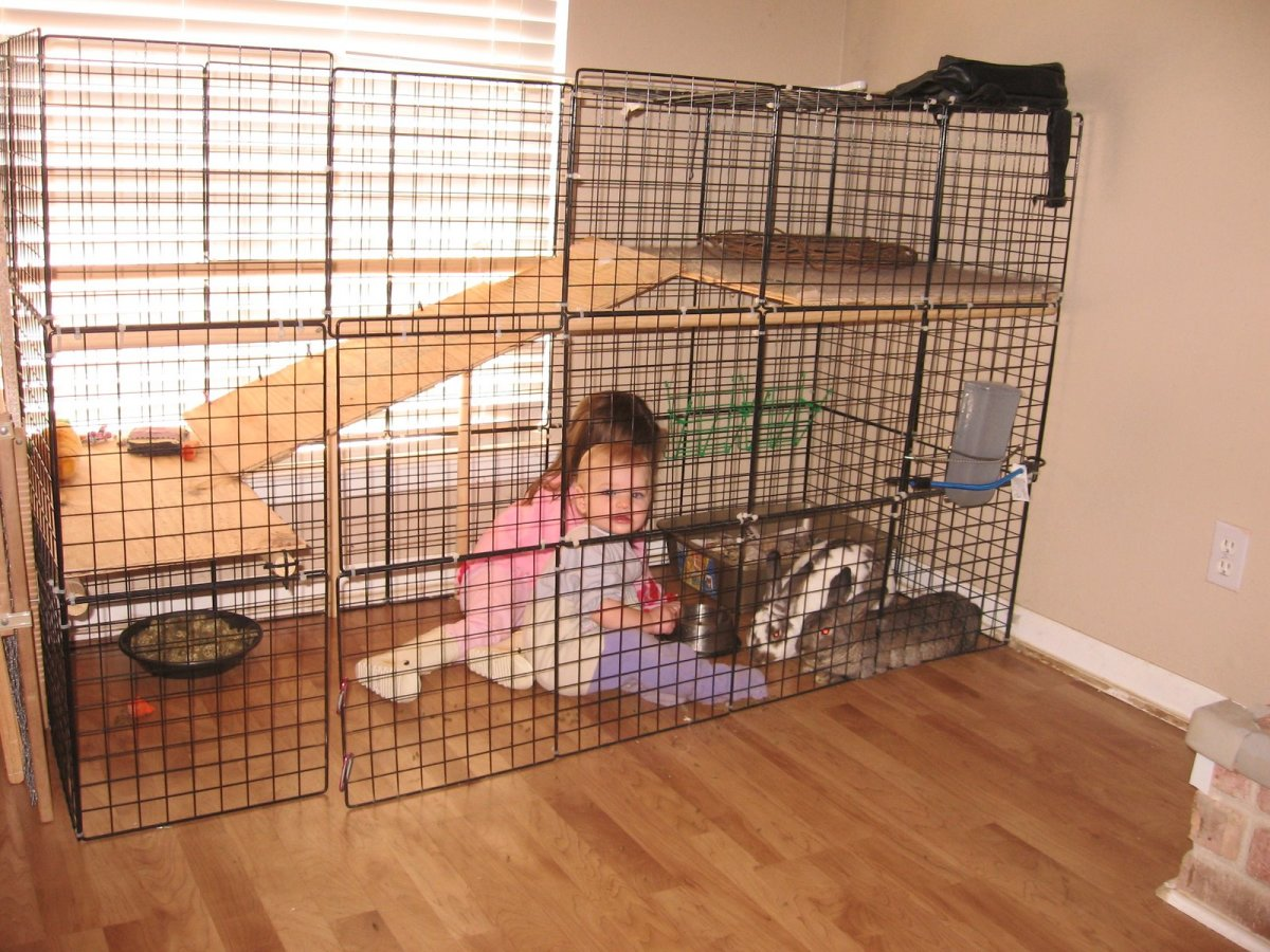 An awesome home made bunny cage found on http://www.jcscs.com/2008_01_01_jcscsfamily_archive.html