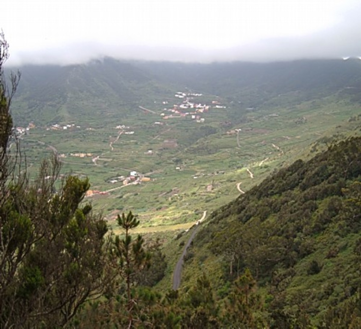 View over El Palmar