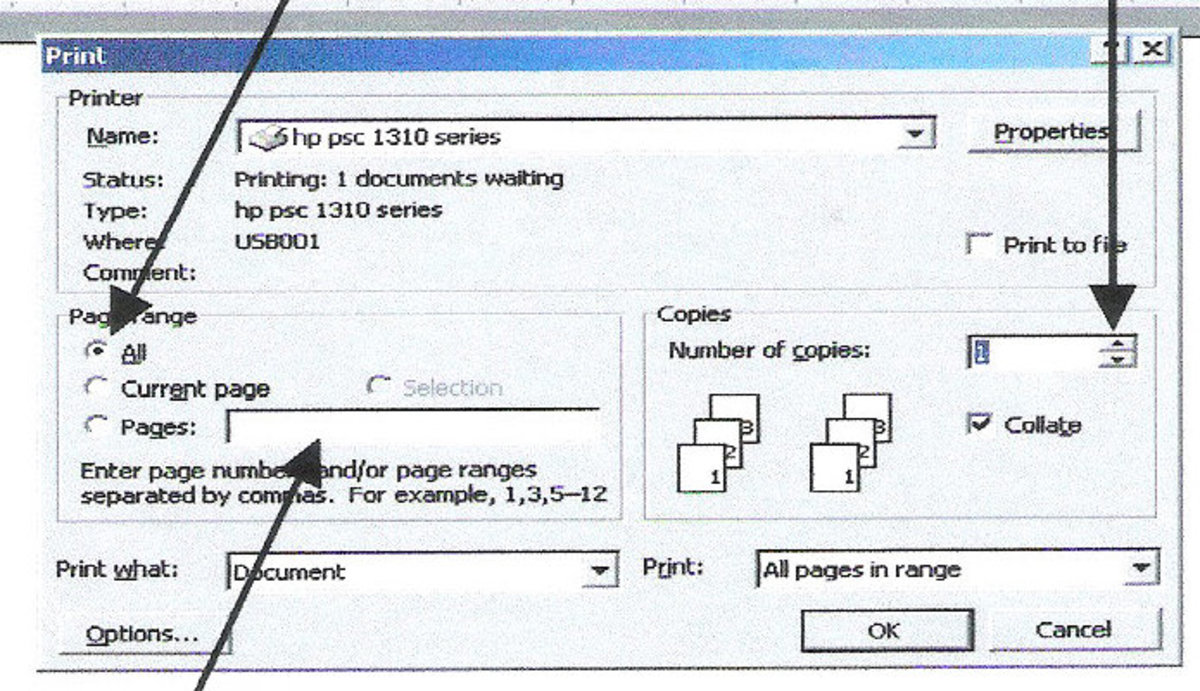 Options for Printing a Document