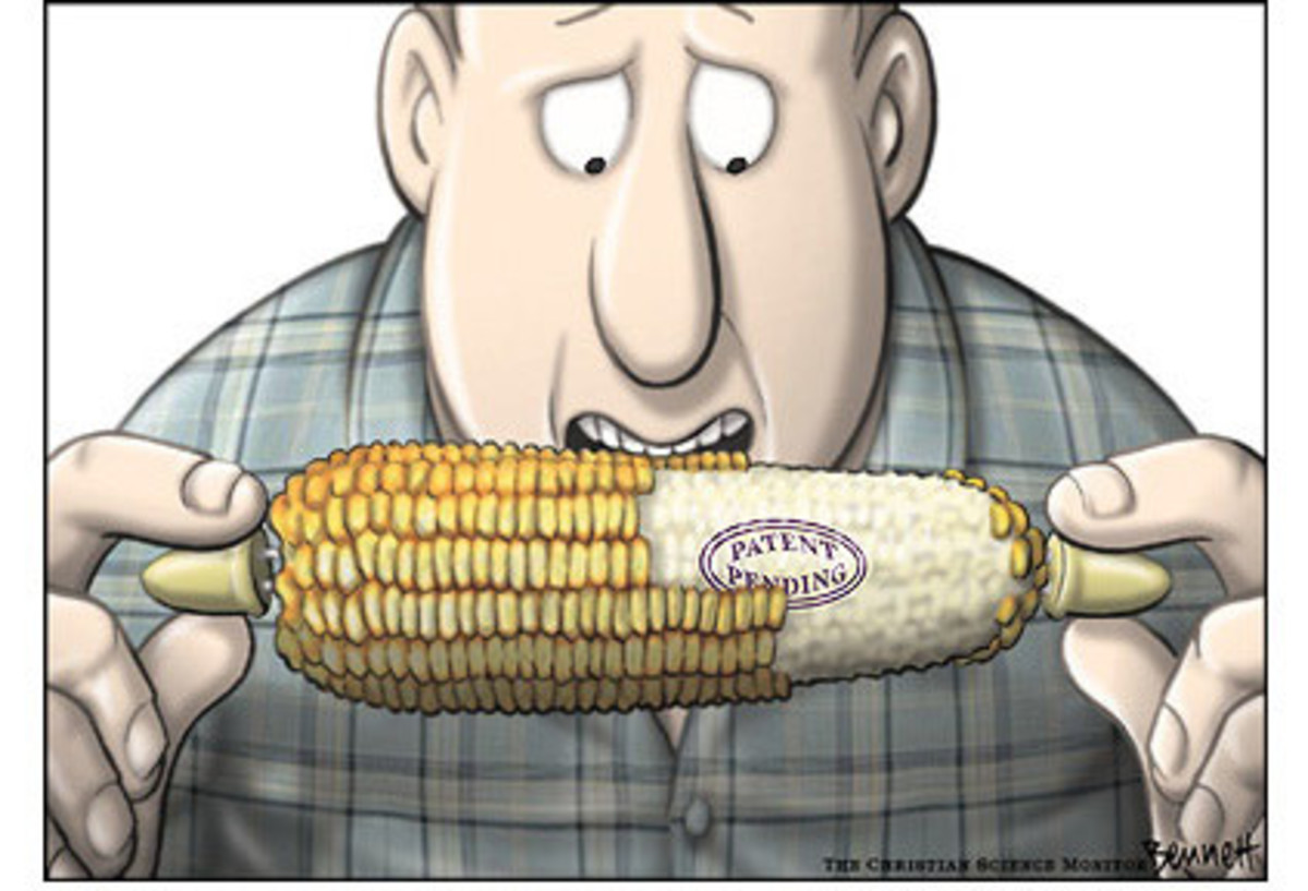 The Advantages & Disadvantages of Genetically Modified Food