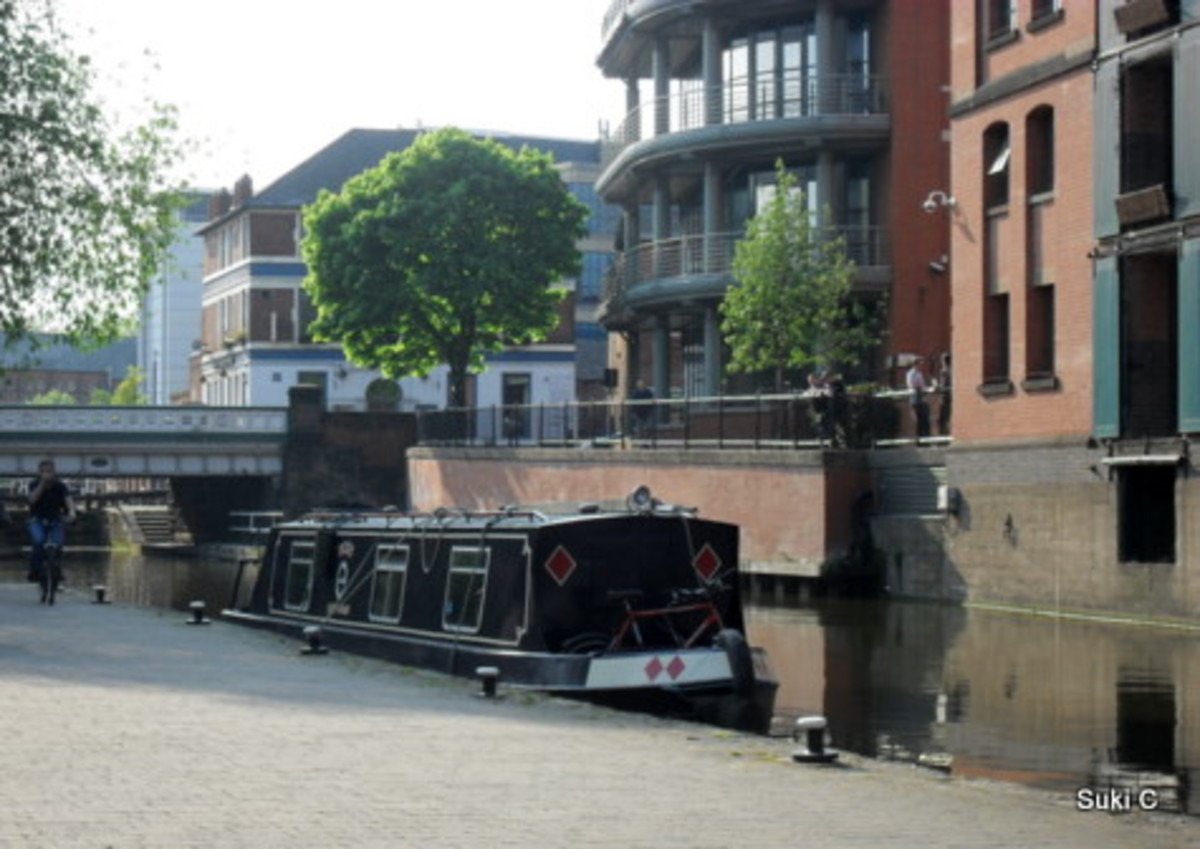 A tranquil scene in the heart of the city