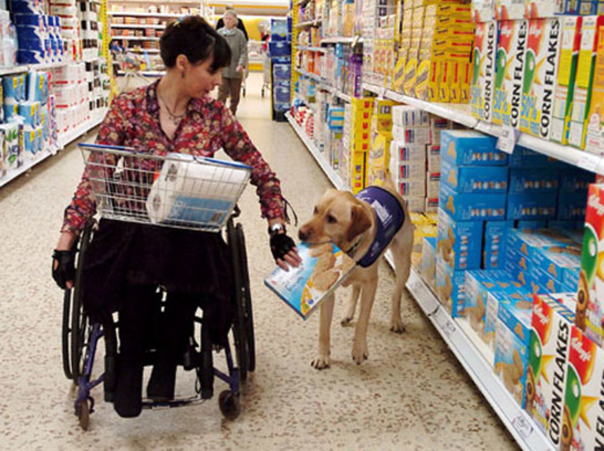 Assistance dog helps the lady shopping