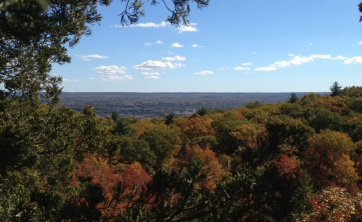 View from Sleeping Giant State Park in Hamden, CT looking over fall foliage to the northeast.