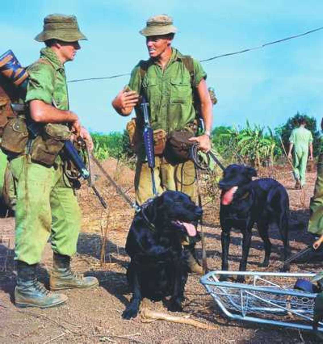 Tracker Dog by Peter Haran- A true Australian Vietnam War Story