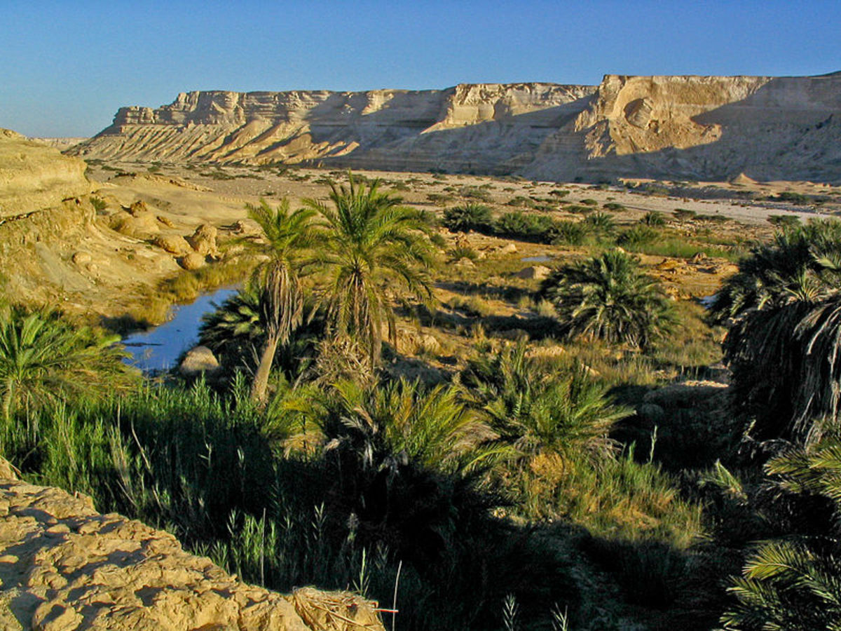 Omani desert landscape