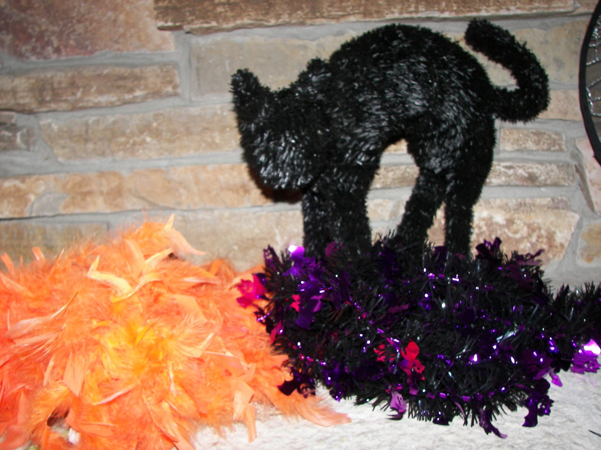 Halloween Decorating Ideas - Black Cat
