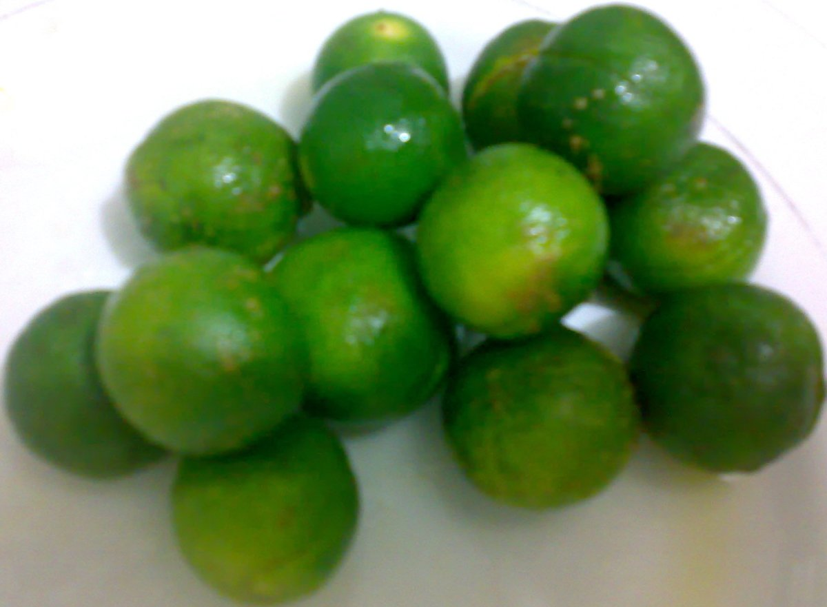 Taking Pure Calamansi, One of the Self-Proven Natural Healthy Foods
