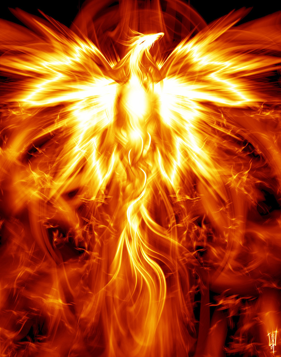 Animal Spirit Guide Meaning & Interpretation: The Phoenix