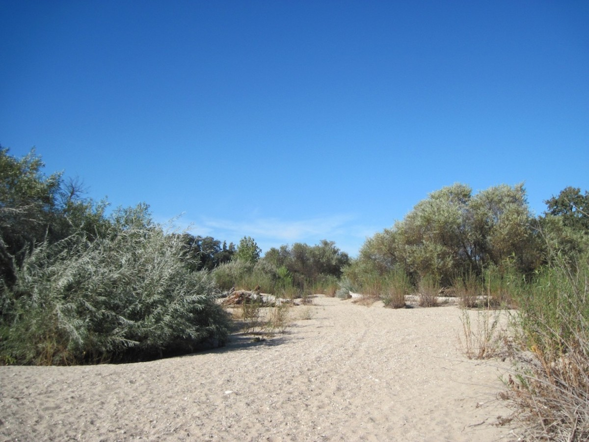 The dry riverbed waits for the rainy season to begin.