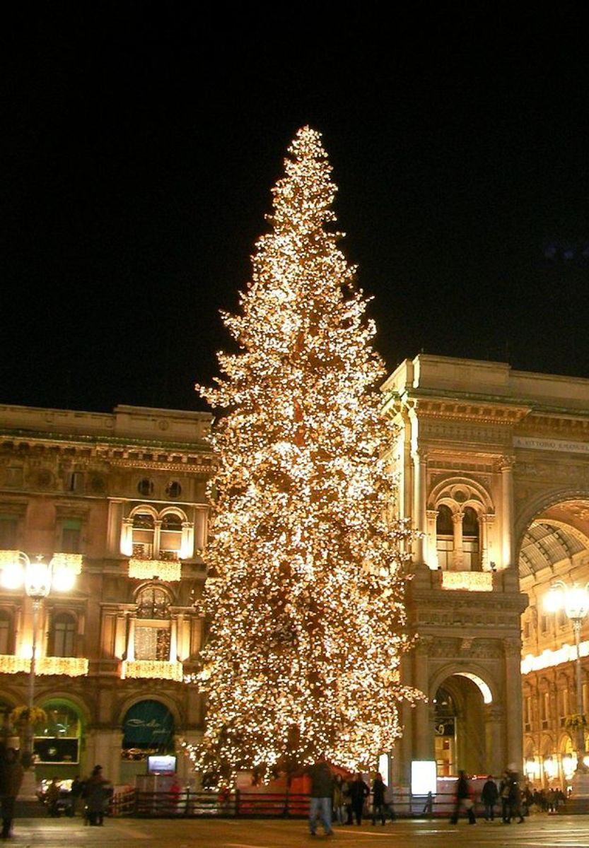 The Christmas tree of Piazza Duomo in Milan, which is incredibly beautiful!