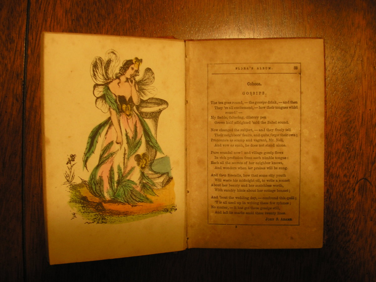 There are many wonderful books about fairies for young adults on the market today.