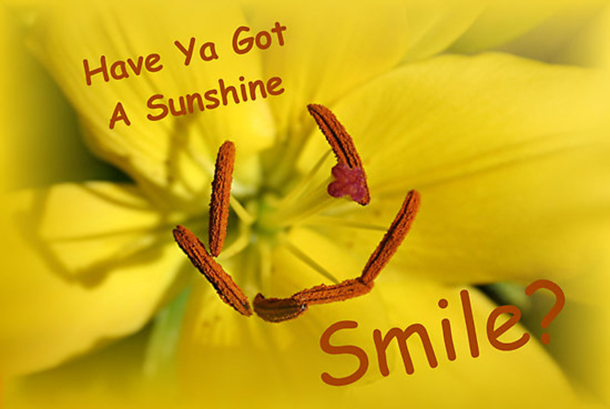 50-ways-to-bring-on-the-sunshine-smile