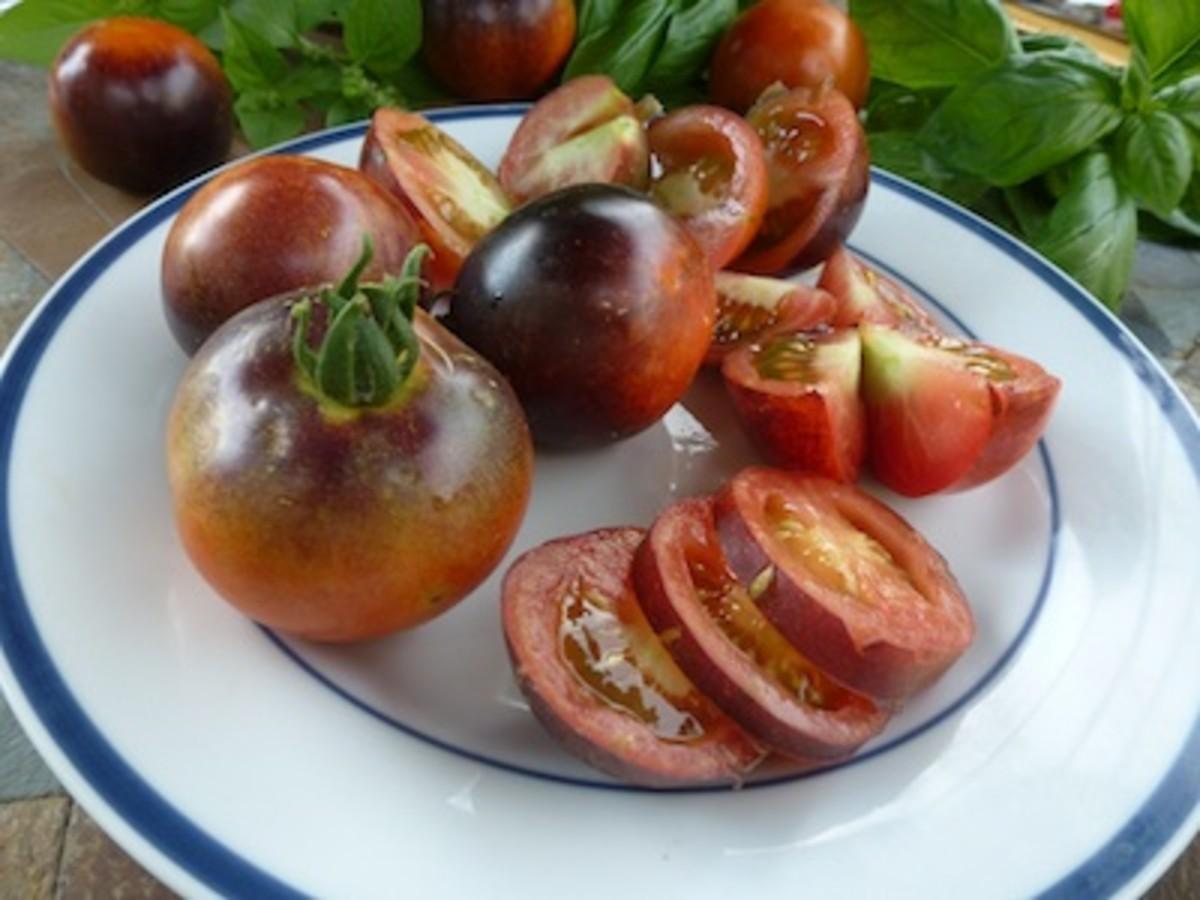 indigo-rose-tomato