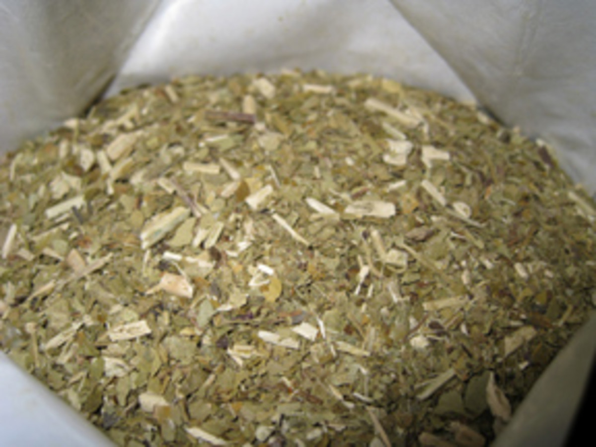 The cut up tea leaves and stems of yerba mate.