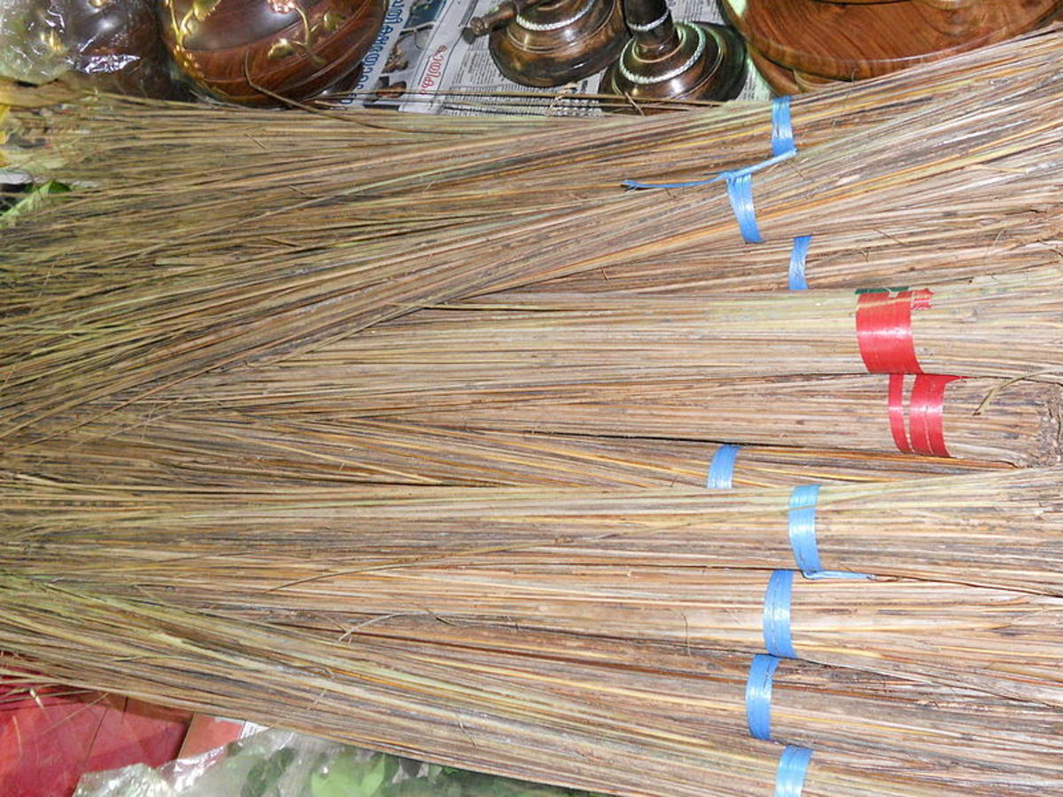 coconut brooms